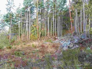 Photo 3: LOT 105 JOHNSTON HEIGHTS ROAD in Sunshine Coast: Home for sale : MLS®# R2244687