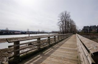 """Photo 16: 311 250 SALTER Street in New Westminster: Queensborough Condo for sale in """"PADDLERS LANDING"""" : MLS®# R2445205"""