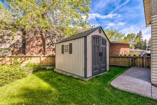 Photo 48: 204 Dalgleish Bay NW in Calgary: Dalhousie Detached for sale : MLS®# A1144517