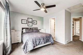 Photo 16: 467 Cranberry Circle SE in Calgary: Cranston Detached for sale : MLS®# A1132288