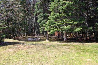 Photo 31: 117 SUMMIT Crescent in Mackenzie: Mackenzie -Town House for sale (Mackenzie (Zone 69))  : MLS®# R2556673