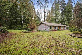 Photo 24: 20679 TYNER Avenue in Maple Ridge: Northwest Maple Ridge House for sale : MLS®# R2526748