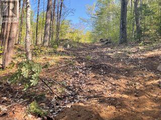Photo 12: 1372 LAKE LORRAINE Road in Tory Hill: Vacant Land for sale : MLS®# 40052884