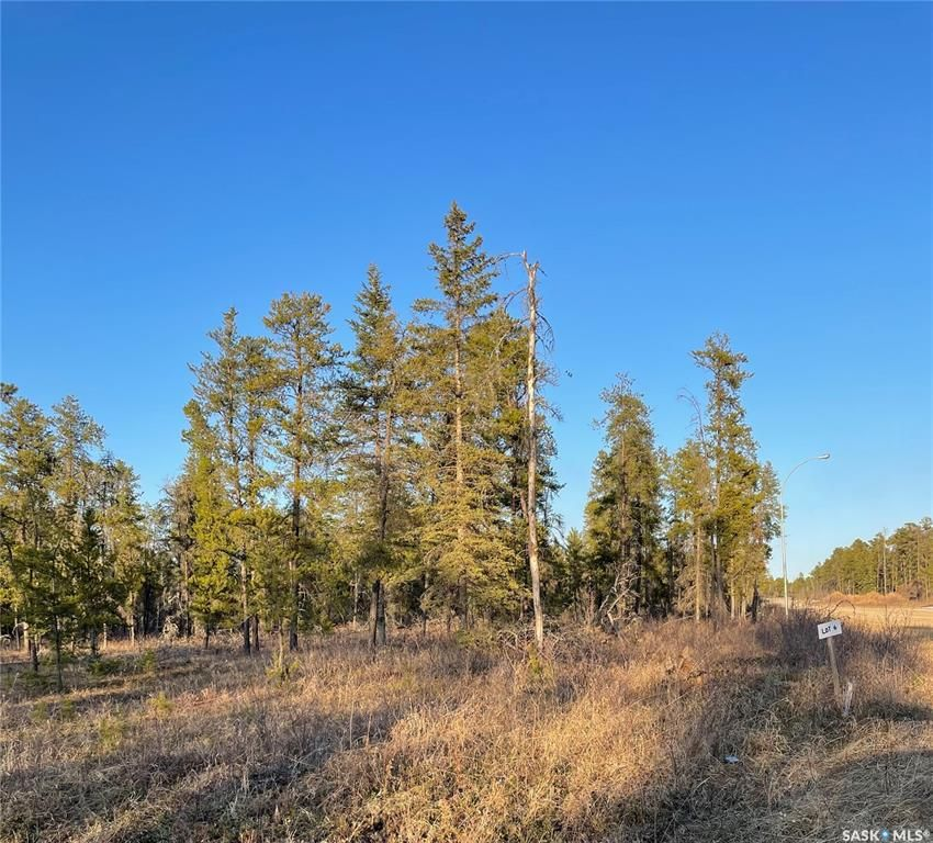 Main Photo: Over 1 acre lots in Hudson Bay: Lot/Land for sale : MLS®# SK850482