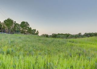 Photo 47: 31010 WOODLAND Heights in Rural Rocky View County: Rural Rocky View MD Detached for sale : MLS®# A1132034