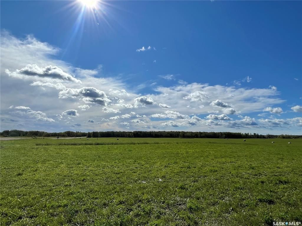 Main Photo: Lot 2 2nd Avenue South in Goodsoil: Lot/Land for sale : MLS®# SK868100