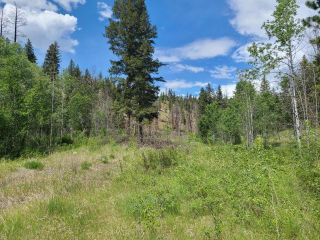 Photo 6: 1284 RENSCH ROAD: Loon Lake Lots/Acreage for sale (South West)  : MLS®# 162651