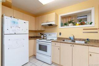 Photo 25: 4374 Elnido Cres in VICTORIA: SE Mt Doug House for sale (Saanich East)  : MLS®# 831755