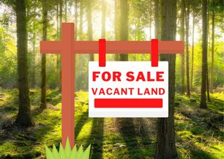 Photo 1: 239 New Cheverie Road in Burlington: 403-Hants County Vacant Land for sale (Annapolis Valley)  : MLS®# 202110100