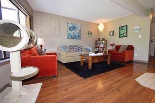 Photo 39: 2921 Cedar Drive in Sorrento: Blind Bay House for sale (South Shuswap)  : MLS®# 10232374