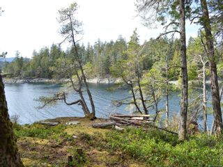 Photo 53: SL3 Read Island in : Isl Read Island House for sale (Islands)  : MLS®# 872746
