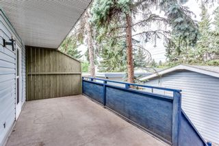 Photo 16: 11217 11 Street SW in Calgary: Southwood Semi Detached for sale : MLS®# A1126486