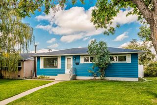 Photo 38: 78 Franklin Drive in Calgary: Fairview Detached for sale : MLS®# A1142495