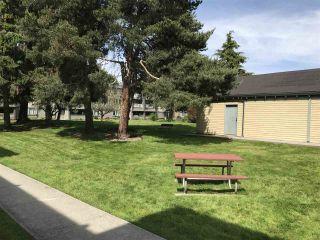 "Photo 19: 227 3411 SPRINGFIELD Drive in Richmond: Steveston North Condo for sale in ""Bayside Court"" : MLS®# R2173185"