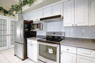Photo 14: 11575 13 Avenue in Edmonton: Zone 16 House for sale : MLS®# E4248039