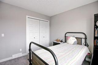 Photo 25: 137 Redstone Common NE in Calgary: Redstone Semi Detached for sale : MLS®# A1132067