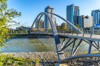 Photo 48: 3005 433 11 Avenue SE in Calgary: Beltline Apartment for sale : MLS®# A1106786
