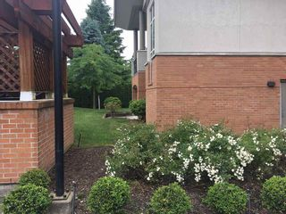 Photo 9: 216 33546 HOLLAND AVENUE in Abbotsford: Central Abbotsford Condo for sale : MLS®# R2180058