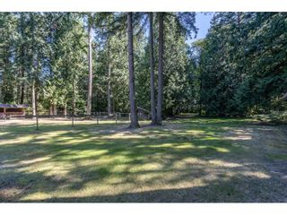 Photo 37: 2186 198 Street in Langley: Brookswood Langley House for sale : MLS®# R2489409