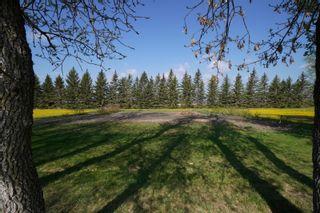 Photo 63: 32149 Road 68 N in Portage la Prairie RM: House for sale : MLS®# 202112201