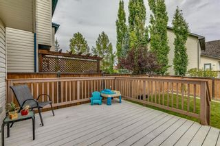 Photo 36: 18 Copperfield Crescent SE in Calgary: Copperfield Detached for sale : MLS®# A1141643