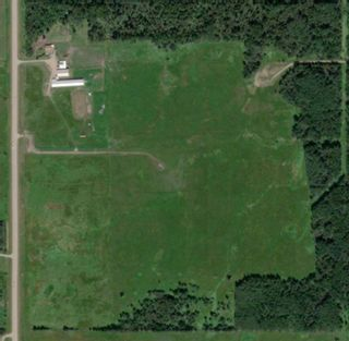 Photo 45: 47513 Highway 22: Rural Brazeau County Detached for sale : MLS®# A1060203