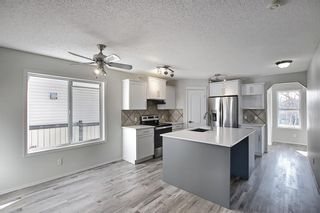 Photo 11: 253 Elgin Way SE in Calgary: McKenzie Towne Detached for sale : MLS®# A1087799