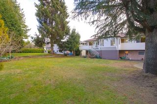 Photo 19: 3411 E 52ND Avenue in Vancouver: Killarney VE House for sale (Vancouver East)  : MLS®# R2243209