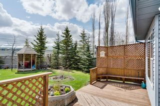 Photo 35: 64 Martha's Haven Gardens NE in Calgary: Martindale Detached for sale : MLS®# A1107070