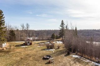 Photo 29: 50505 RGE RD 20: Rural Parkland County House for sale : MLS®# E4233498