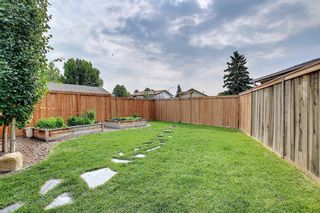 Photo 23: 110 Abalone Crescent NE in Calgary: Abbeydale Detached for sale : MLS®# A1127524