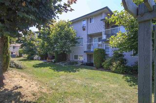 "Photo 19: 72 34332 MACLURE Road in Abbotsford: Central Abbotsford Townhouse for sale in ""IMMEL RIDGE"" : MLS®# R2187913"