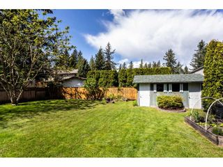 Photo 17: 4480 203 Street in Langley: Langley City House for sale : MLS®# R2384555
