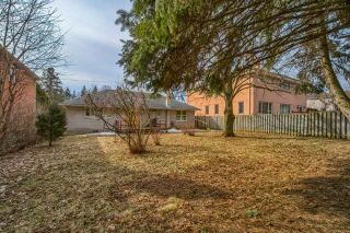 Photo 13: 26 Winlock Park in Toronto: Newtonbrook East House (Bungalow-Raised) for sale (Toronto C14)  : MLS®# C4393234