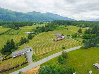 Photo 18: 41521 HENDERSON Road: Columbia Valley House for sale (Cultus Lake)  : MLS®# R2383034