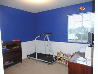 Photo 15: 9168 160A STREET in MAPLE GLEN: House for sale