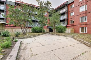 Photo 2: 119 333 Garry Crescent NE in Calgary: Greenview Apartment for sale : MLS®# A1139361