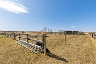 Photo 17: 338245 38 Street W: Rural Foothills County Detached for sale : MLS®# A1091978