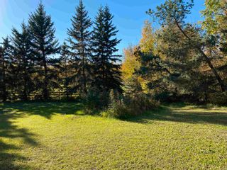 Photo 12: 450080 HWY 795: Rural Wetaskiwin County House for sale : MLS®# E4264794