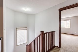 Photo 22: 303 Chapalina Terrace SE in Calgary: Chaparral Detached for sale : MLS®# A1113297