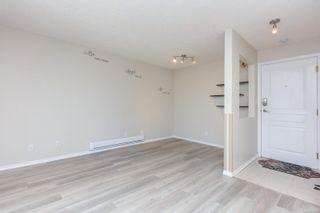 Photo 8: 305 445 Cook St in : Vi Fairfield West Condo for sale (Victoria)  : MLS®# 872597