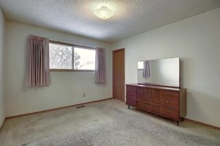 Photo 10: 4323 49 Street NE in Calgary: Whitehorn Detached for sale : MLS®# A1043612