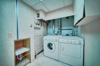 Photo 42: 16038 94A Avenue in Edmonton: Zone 22 House for sale : MLS®# E4266489