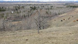 Photo 17: SE 35-20-2W5: Rural Foothills County Residential Land for sale : MLS®# A1101395