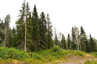 """Photo 1: LOT 13 GRANTHAM Road in Smithers: Smithers - Rural Land for sale in """"Grantham"""" (Smithers And Area (Zone 54))  : MLS®# R2604020"""