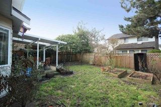 Photo 11: 10611 GAUNT Court in Richmond: Steveston North House for sale : MLS®# R2140052