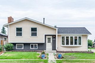 Main Photo: 3323 42 Street NE in Calgary: Whitehorn Detached for sale : MLS®# A1128516