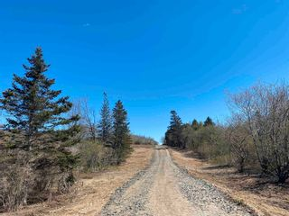 Photo 16: Lot NO 101 Highway in Brighton: 401-Digby County Vacant Land for sale (Annapolis Valley)  : MLS®# 202111786