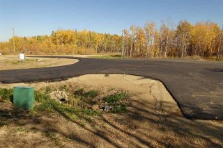 Photo 4: Lot 7 27331 Township Road 481: Rural Leduc County Rural Land/Vacant Lot for sale : MLS®# E4254979