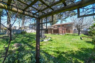 Photo 42: 4643 Macintyre Ave in : CV Courtenay East House for sale (Comox Valley)  : MLS®# 872744
